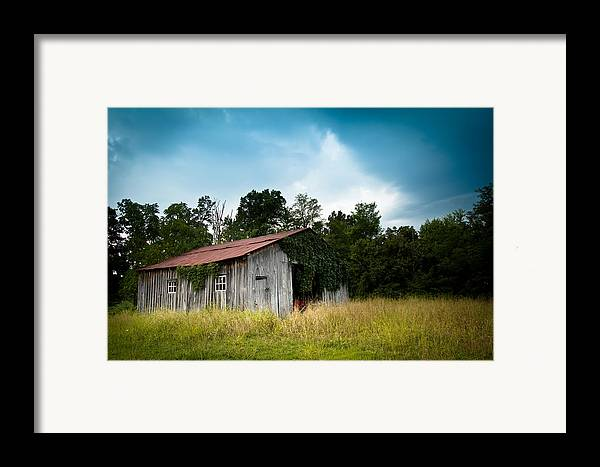 Barn Framed Print featuring the photograph Tin Roof...ivy Covered Barn by Shane Holsclaw