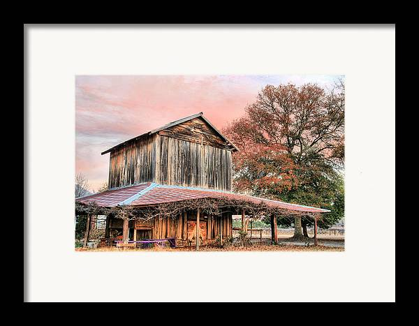 Tobacco Framed Print featuring the photograph Tobacco Road by JC Findley