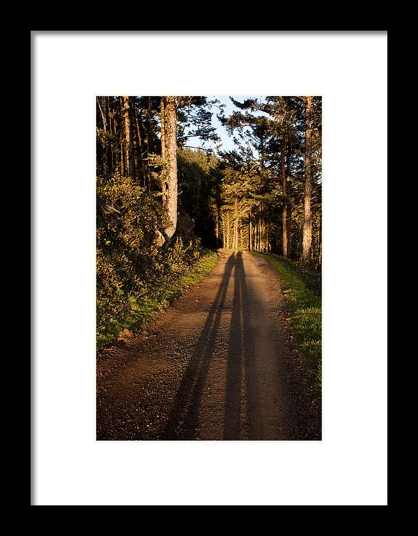Woods Framed Print featuring the photograph Together by John Daly