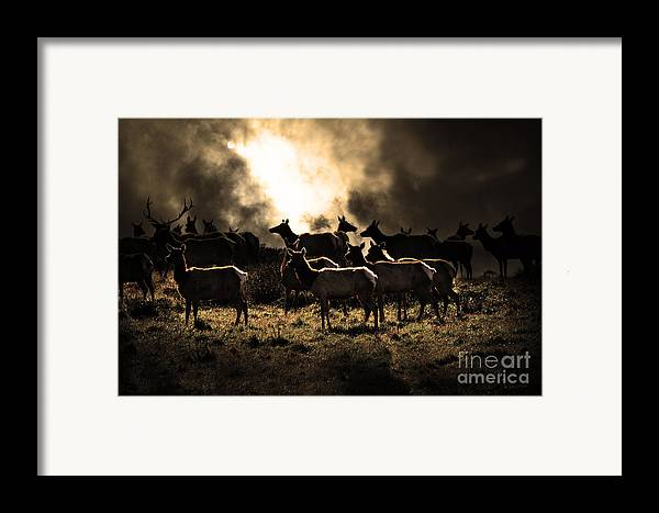 Bayarea Framed Print featuring the photograph Tomales Bay Harem Under The Midnight Moon - 7d21241 - Sepia by Wingsdomain Art and Photography