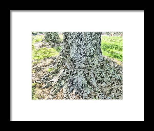 Tree Framed Print featuring the photograph Tones And Textures by Steve Taylor