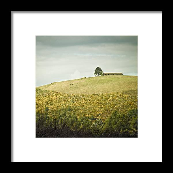 Nature Framed Print featuring the photograph Top Of The Hill by Cedric Lange