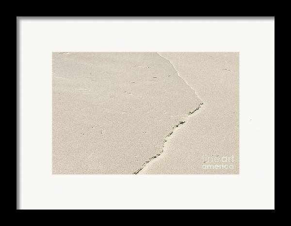 Point Lobos Framed Print featuring the photograph Torn Sand by Artist and Photographer Laura Wrede