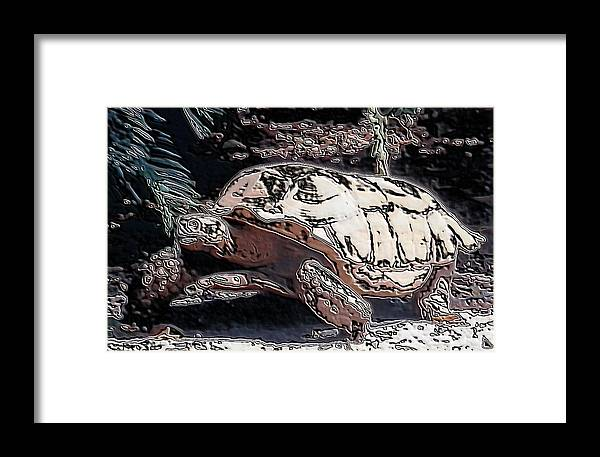 Galapagos Tortoise I Used A Polished Stone Artistic Effect On Framed Print featuring the photograph Tortoise Of Stone by Belinda Lee