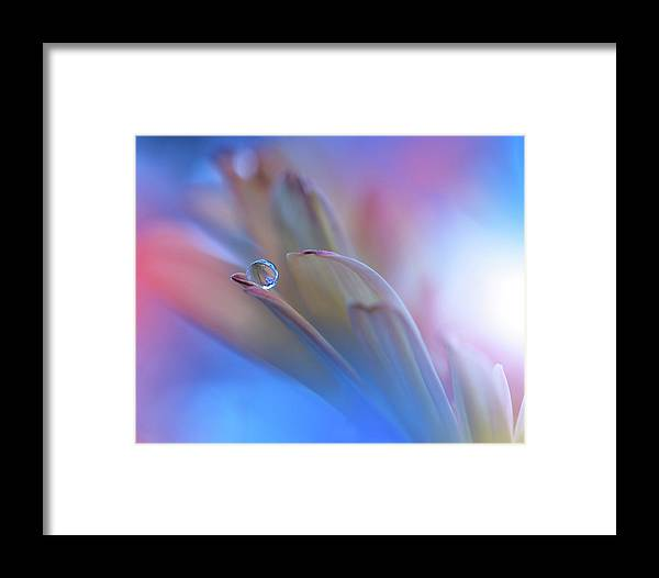 Macro Framed Print featuring the photograph Touch Me Softly... by Juliana Nan