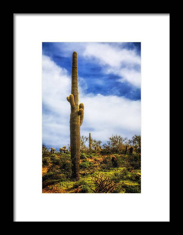 Fred Larson Framed Print featuring the photograph Towering Saguaro by Fred Larson