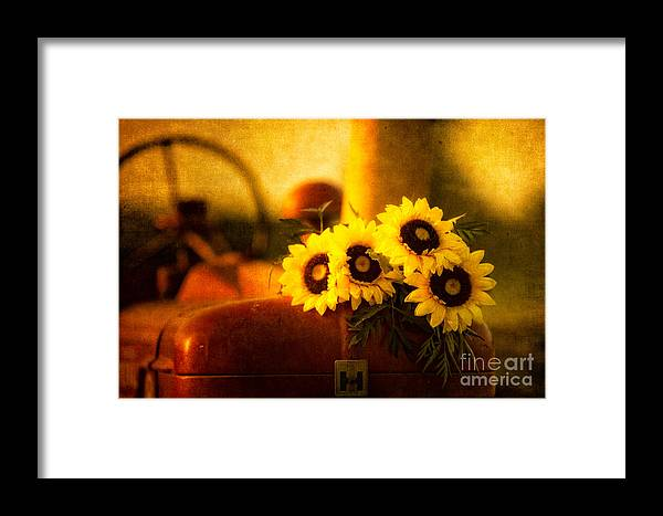 Tractor Framed Print featuring the photograph Tractors And Sunflowers by Todd Bielby
