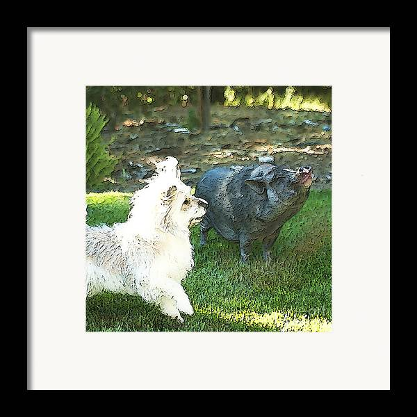 Pig Framed Print featuring the photograph Treats For Woody And Schnitzel by Artist and Photographer Laura Wrede