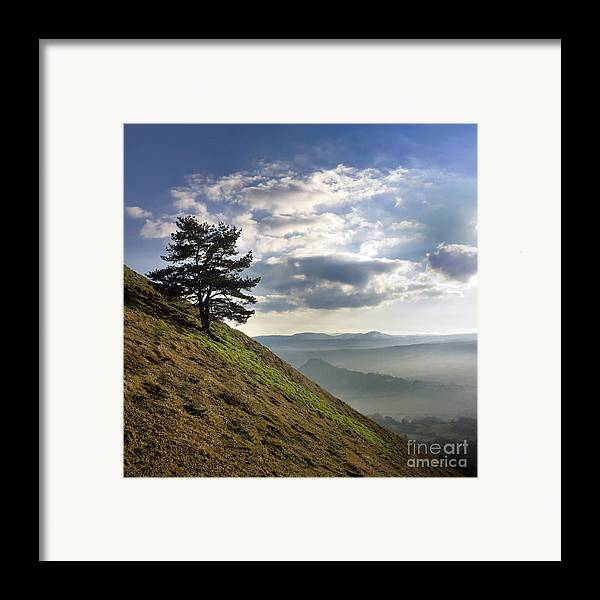 Outdoors Framed Print featuring the photograph Tree And Misty Landscape by Bernard Jaubert