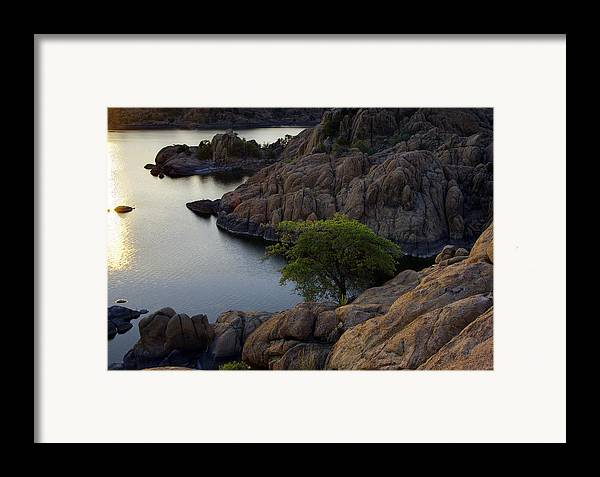 Sunset Framed Print featuring the photograph Tree At Sunset At The Granite Dells Arizona by Dave Dilli