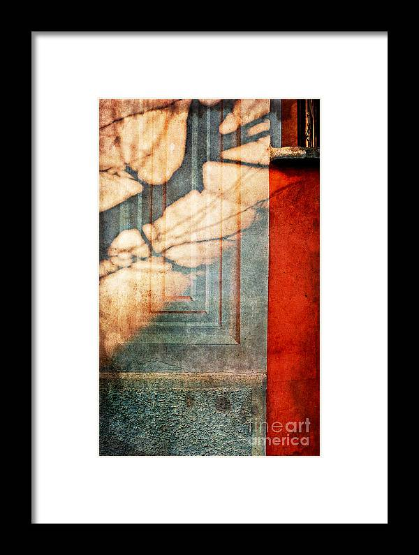 Shadow Framed Print featuring the photograph Tree Branches Shadow On Wall by Silvia Ganora