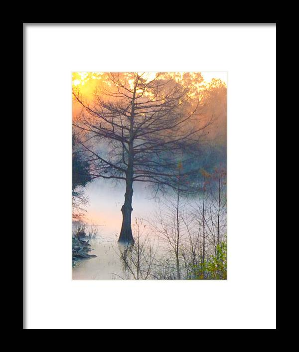 Orcinusfotograffy Framed Print featuring the photograph Tree Fog Sunrise by Kimo Fernandez