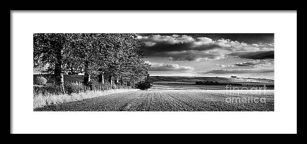 Tree Line Framed Print featuring the photograph Tree Line by Rod McLean