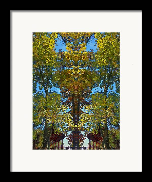 Trees Framed Print featuring the photograph Trees Alive by Susan Leggett