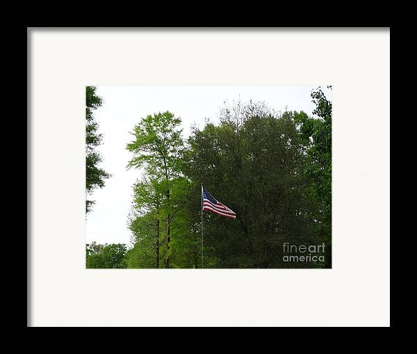 Flag Framed Print featuring the photograph Trees And Flag by Joseph Baril