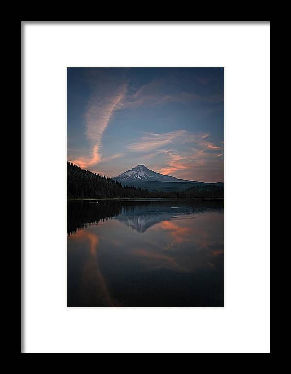 Trillium Twilight Framed Print featuring the photograph Trillium Twilight by Wes and Dotty Weber