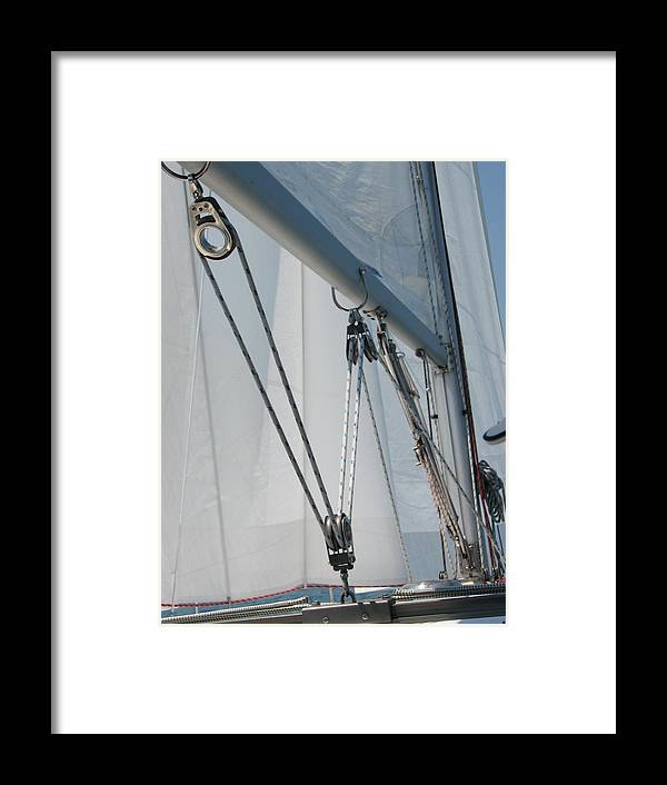 Sail Framed Print featuring the photograph Trimming The Sails by Sue Thomson