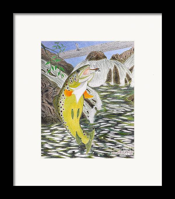 Trout Stream Framed Print featuring the drawing Trout Stream In May by Gerald Strine