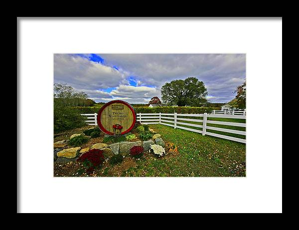 Cape Cod Framed Print featuring the photograph Truro Vineyard by David DeCenzo