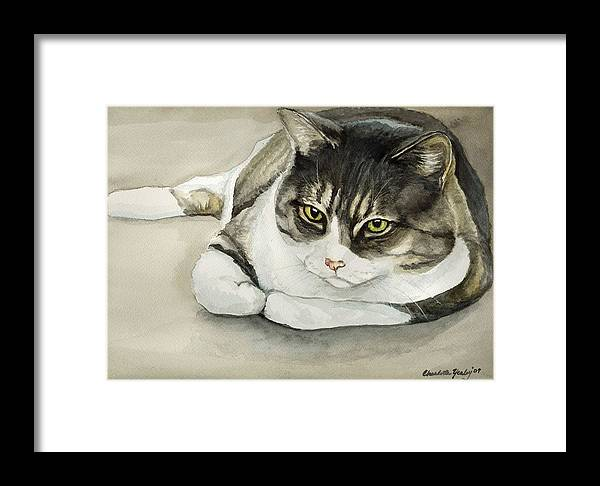Cat Framed Print featuring the painting Tubby by Charlotte Yealey
