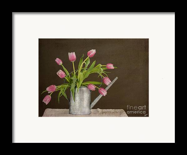 Tulips Framed Print featuring the photograph Tulip Bouquet by Alana Ranney