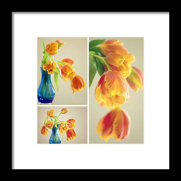 Tulpe Framed Print featuring the pyrography Tulips Collage by Steffen Gierok
