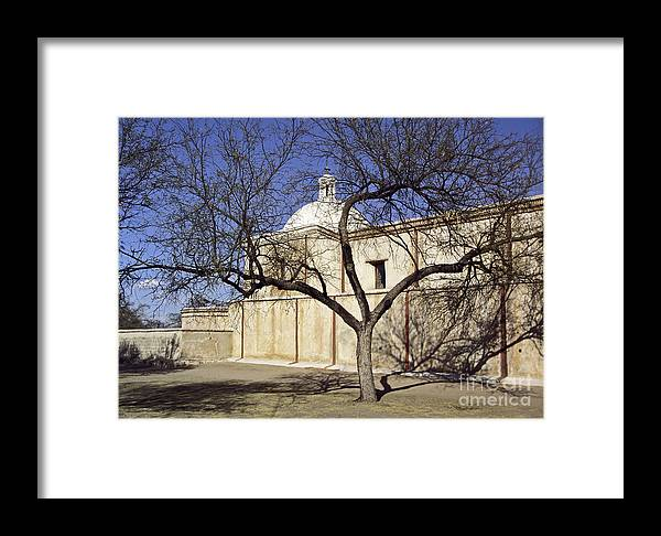 Mission Framed Print featuring the photograph Tumacacori With Tree by Kathy McClure