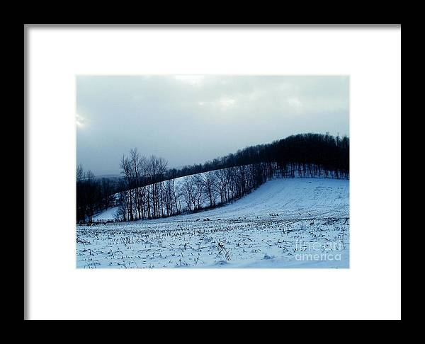 New York Framed Print featuring the photograph Turkeys In A Winter Field by Christian Mattison