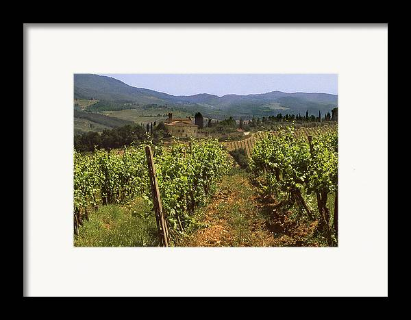 Wine Framed Print featuring the photograph Tuscany Vineyard No.2 by Mel Felix