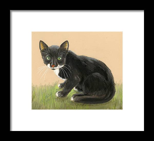 Animals Framed Print featuring the painting Tuxedo Cat by Ruth Seal