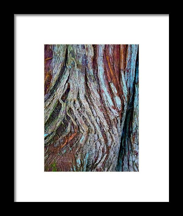 Wood Framed Print featuring the photograph Twisted Colourful Wood by Hakon Soreide