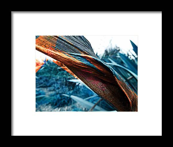 False Colour Framed Print featuring the photograph Twisted by Steve Taylor