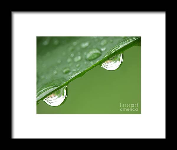 Drops Framed Print featuring the photograph Two Droplets by Roman Milert