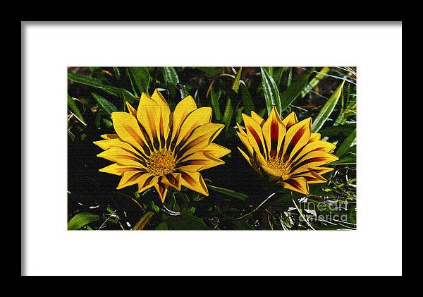 Flowers Framed Print featuring the digital art Two Flowers by Pravine Chester