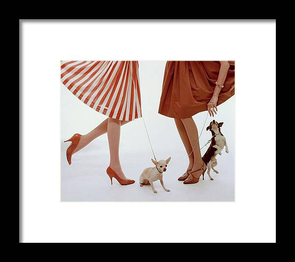 Accessories Framed Print featuring the photograph Two Models With Dogs by William Bell