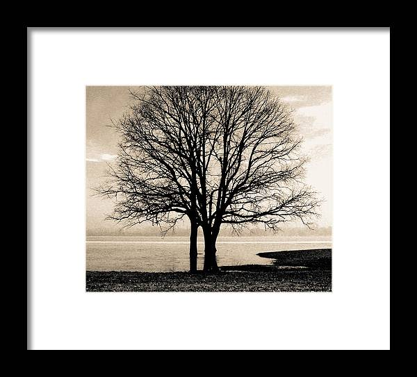Love Framed Print featuring the photograph Two by Robert  Rienzo