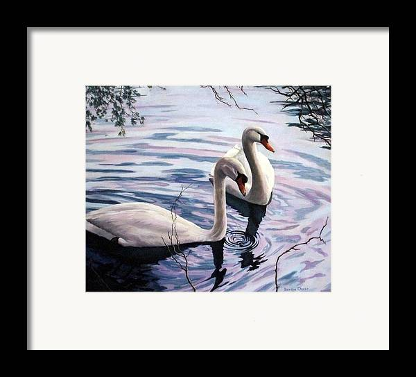 Swan Framed Print featuring the painting Two Swans A Swimming by Sandra Chase
