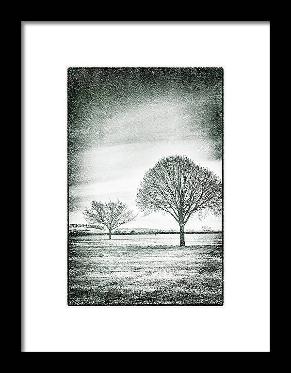 Henley-on-thames Framed Print featuring the photograph Two Trees In A Field by Lenny Carter
