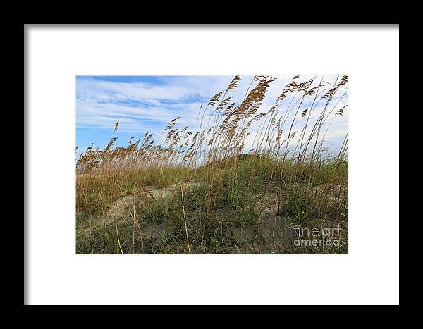 Tybee Island Framed Print featuring the photograph Tybee Island Dune by Carol Groenen