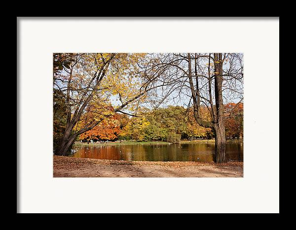 Pond Framed Print featuring the photograph Ujazdowski Park In Warsaw by Artur Bogacki