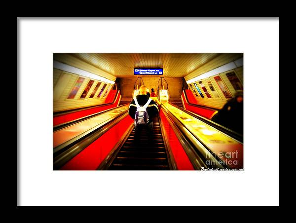 Framed Print featuring the photograph Underground by Pablo Sturm