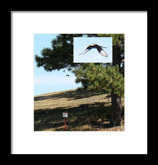 Ufo Framed Print featuring the photograph Unknown Flying Anomaly by Vaswaith Elengwin