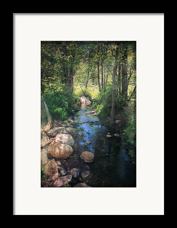 Idyllwild Framed Print featuring the photograph Until I Loved You by Laurie Search