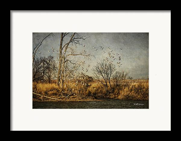 Ducks Framed Print featuring the photograph Up Up And Away by Jeff Swanson
