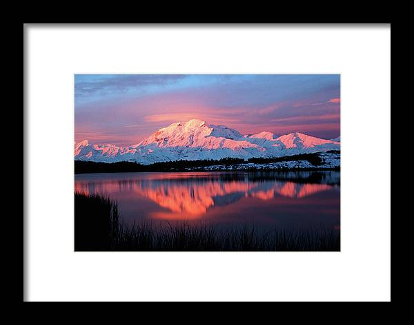 Adnt Framed Print featuring the photograph Usa, Alaska, Denali National Park by Hugh Rose