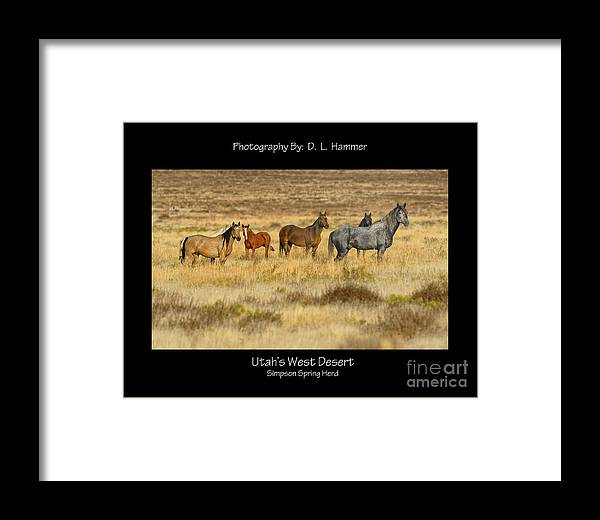 Wildlife Framed Print featuring the photograph Utah's West Desert by Dennis Hammer