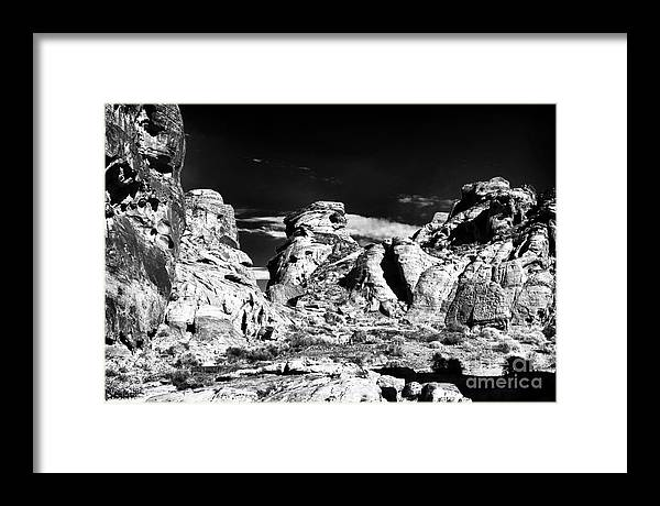 Valley Of The Giants Framed Print featuring the photograph Valley of the Giants by John Rizzuto