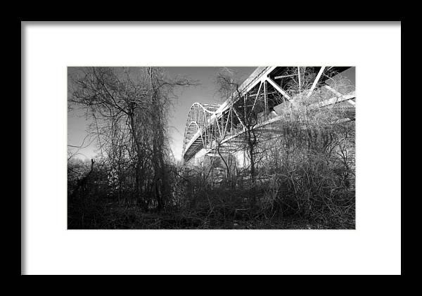 Cape Cod Framed Print featuring the photograph Vegetation Bridge by David DeCenzo