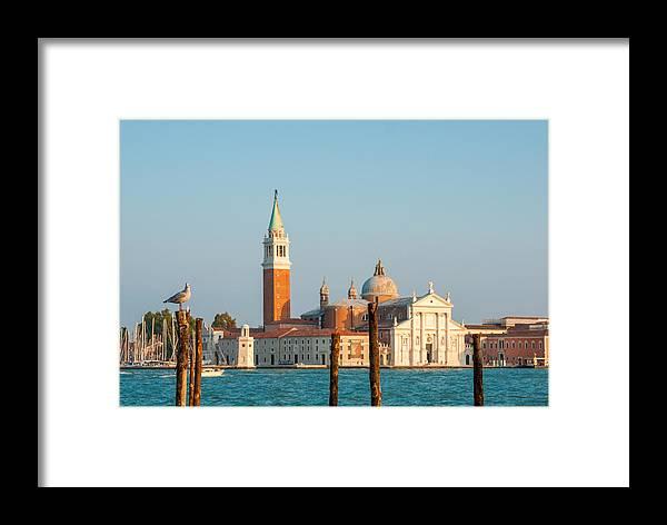 Urban Framed Print featuring the photograph Venetian Dove by Gurgen Bakhshetsyan