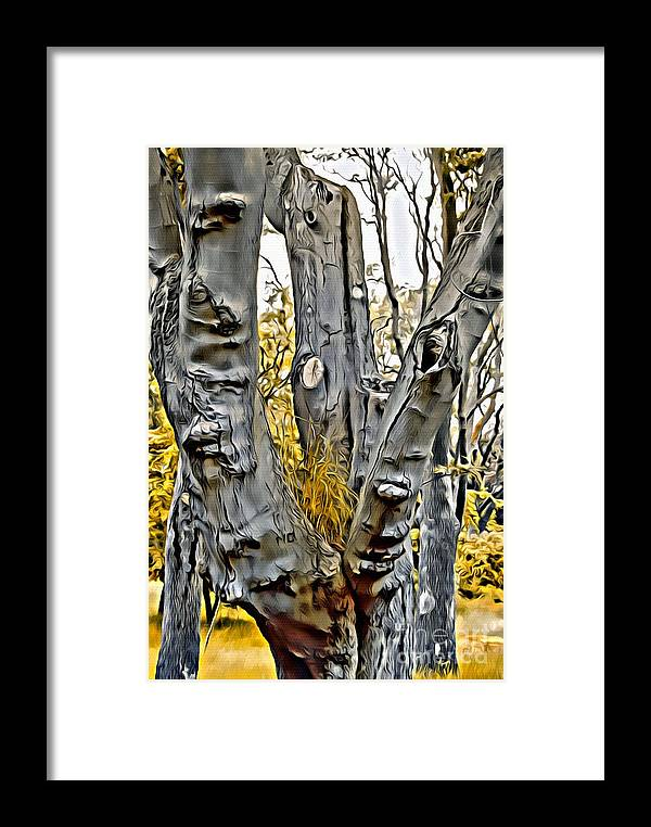 Tree Framed Print featuring the photograph V.i. 0135 by Charles Cunningham